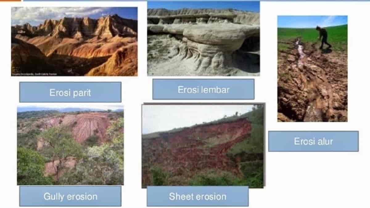 jenis-jenis erosi