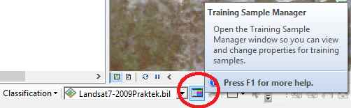 training sample manager di arcgis