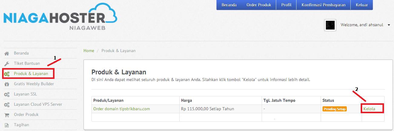 cara mengubah bogspot.com dengan domain sendiri