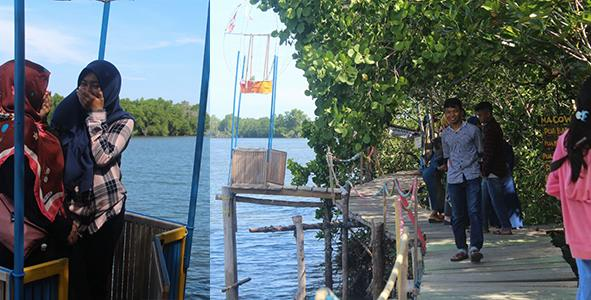 Foto wisata mangrove banua pangka