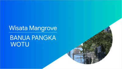 Wisata Baru Hutan Mangrove Banua Pangka di Wotu Luwu Timur yang Lagi Ngetren