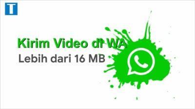 Cara Kirim Video Ukuran Besar Lewat Whatsapp (lebih dari 16mb)
